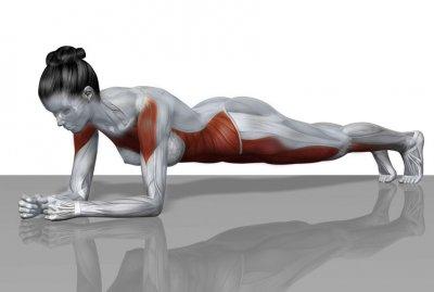 prancha-músculos-e1472521807528