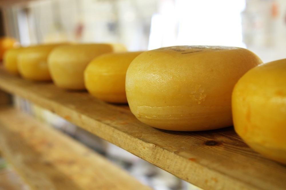 comam queijo